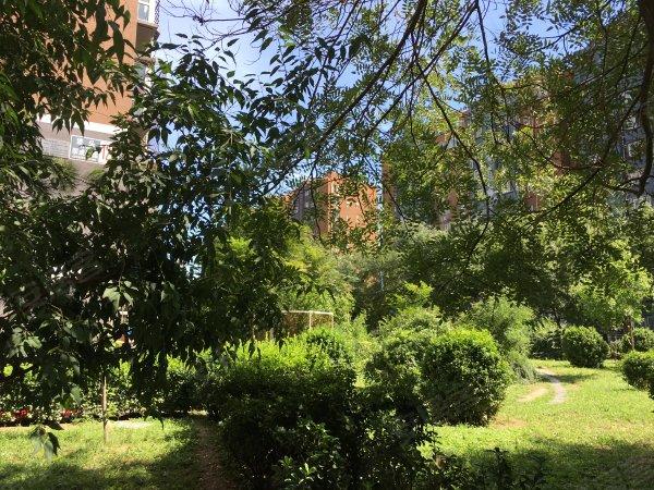 垡头翠成馨园(C区112-144号)户型图实景图片