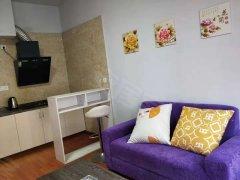 江东新区  温馨舒适的正规一室一厅 拎包入住  江景房 全齐