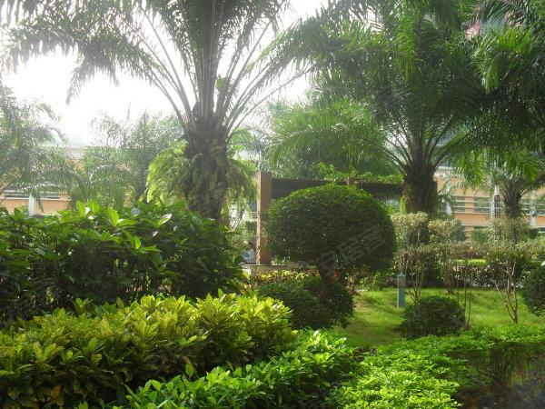 富丽花园户型图实景图片