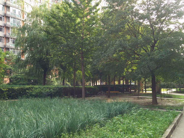 风林绿洲户型图实景图片