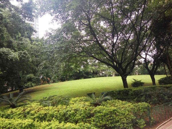 阳光花园户型图实景图片