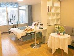宝龙广场背 新透路 汇诚佳源居 一室一厅 精装单身公寓免物业