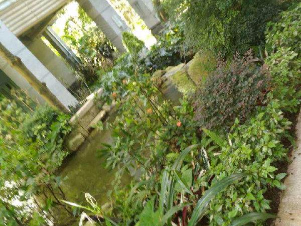 圣莫丽斯户型图实景图片