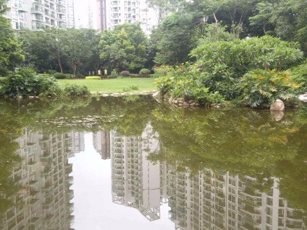 城市山林户型图实景图片