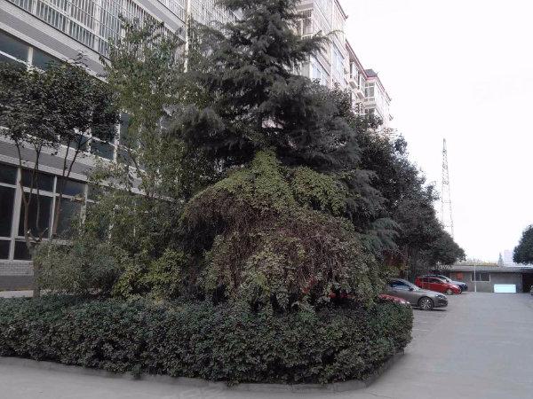 世纪锦城户型图实景图片