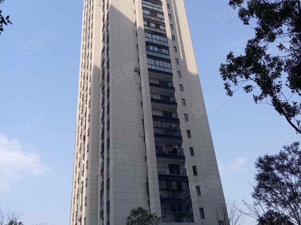 华元欢乐城(公寓)户型图实景图片
