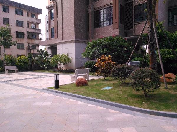 龙泉绿苑户型图实景图片