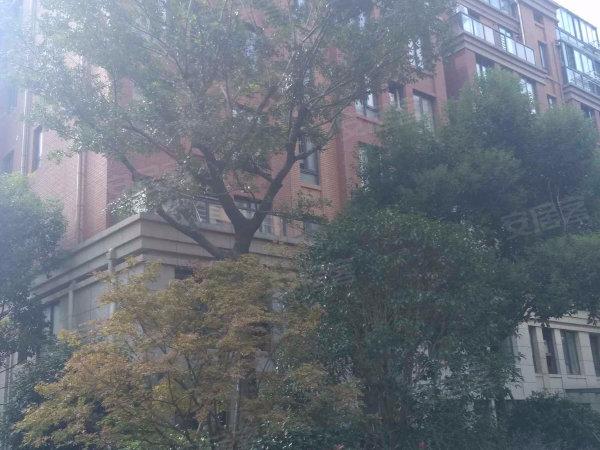 秋月朗庭户型图实景图片