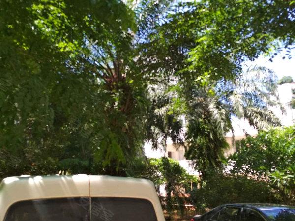 宝阳花园户型图实景图片