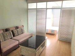 青年公寓丨大学南路,长江中路,超大优化间,一室一厅,精装壁纸