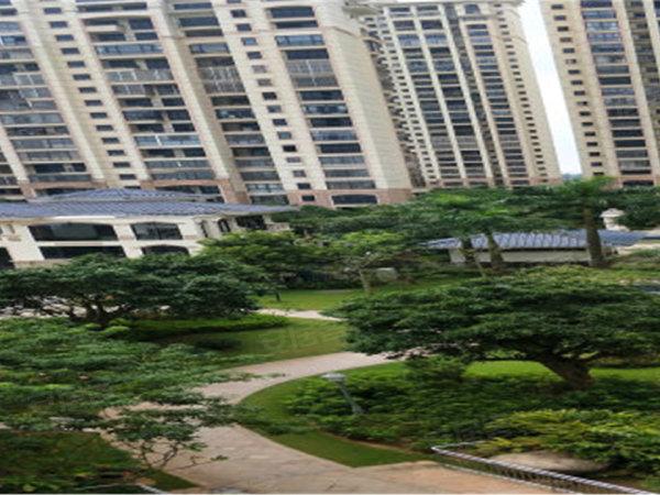 翡翠水城户型图实景图片