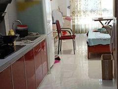 幸福路九洲依云郡标准公寓楼 民用水用电 诚心出租  随时看房