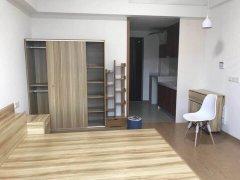 中南锦城公寓房 精装修首 次出租拎包入住 随时看房