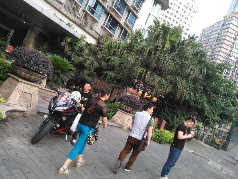 华庭锦园小区实景图