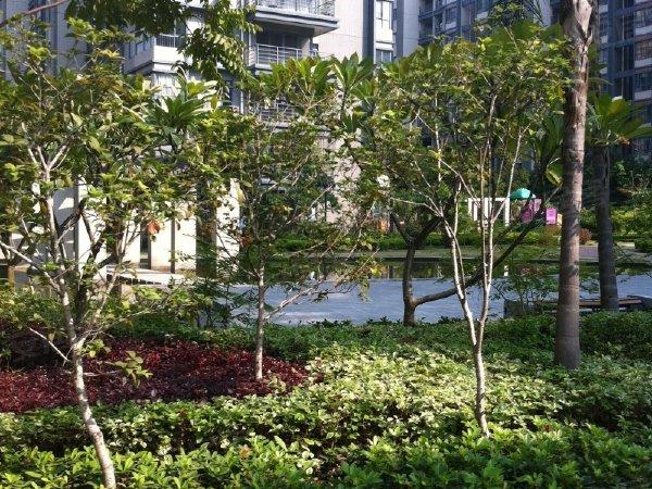 宏达花园(别墅)户型图实景图片