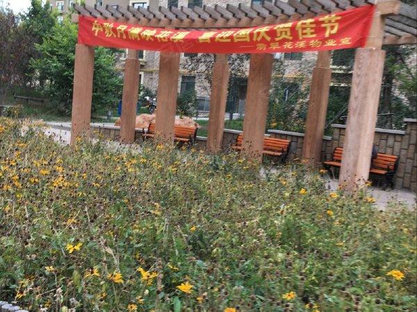翡翠花溪户型图实景图片