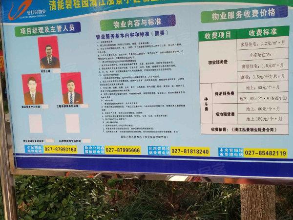 清江泓景户型图实景图片