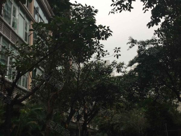 华建大厦户型图实景图片