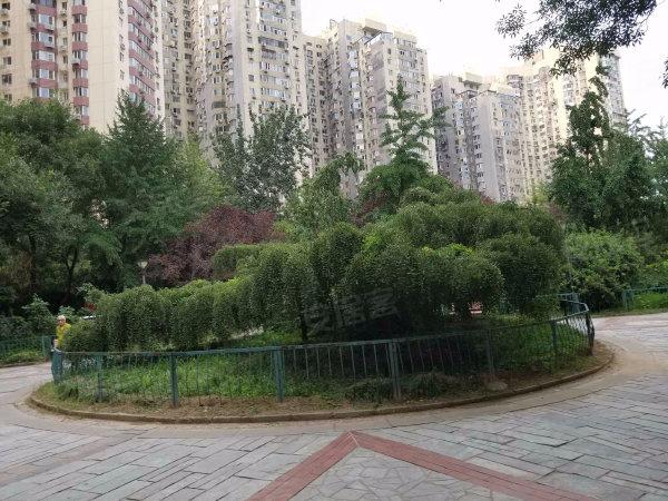 芳城园(一区)户型图实景图片