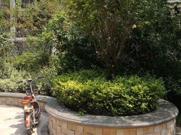 綠博半島戶型圖實景圖片