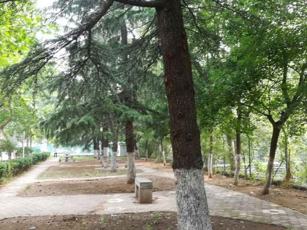舜玉小区(北区)户型图实景图片
