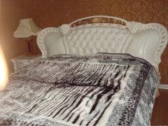 仁和春天带暖气两室两厅一卫,精装修,家具家电齐全