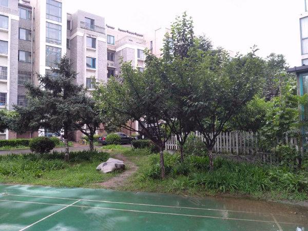 流星花园三区户型图实景图片