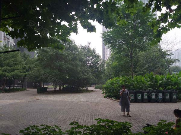 国美第一城2号院户型图实景图片