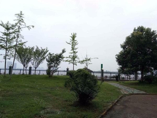 天琴湾户型图实景图片