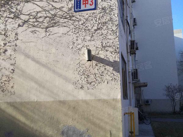 海洋局中院户型图实景图片