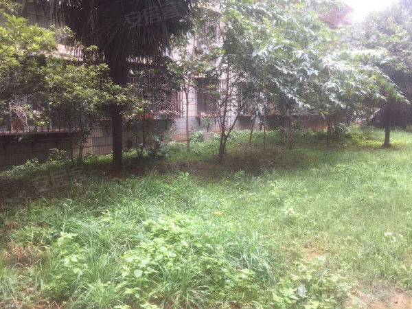 银海温泉花园户型图实景图片