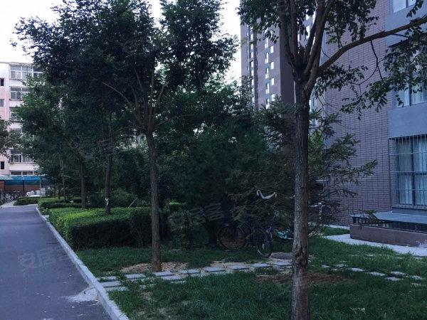 公园六号户型图实景图片