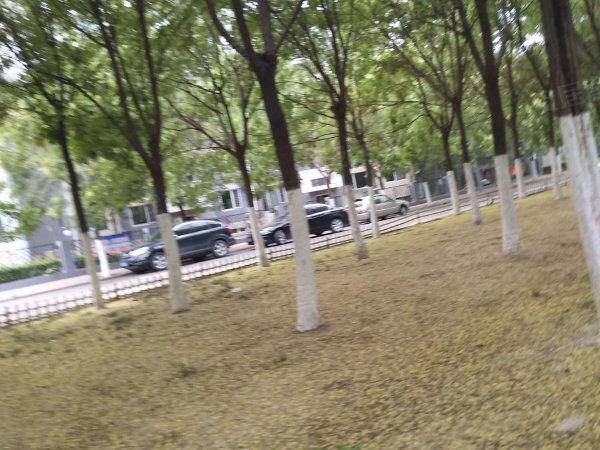 华湖苑户型图实景图片