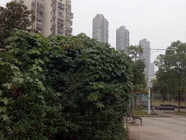 卫东花园3期户型图实景图片