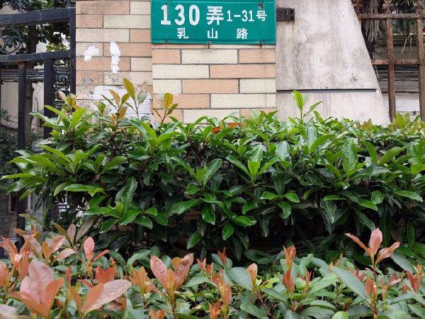 梅园三街坊户型图实景图片