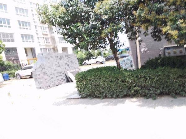豐澤新苑(一期)戶型圖實景圖片