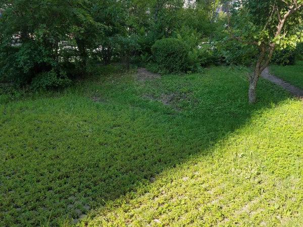 保利罗兰香谷户型图实景图片