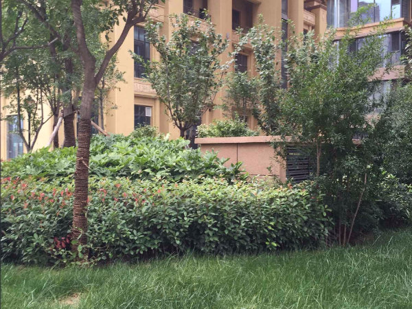 中华世纪城户型图实景图片