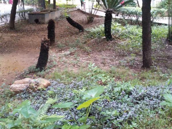 云景花园云景名都户型图实景图片
