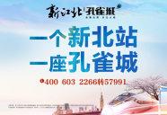 [南京周边]新江北孔雀城