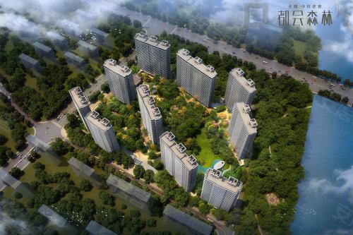 钱江新城一线运河豪宅 把5万方森林秘境搬进家里