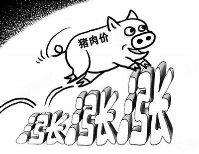 豪送百斤猪肉,究竟是谁这么豪气?