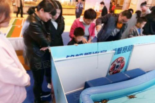 螃蟹喜乐会掀热潮 众多来宾大显身手嗨玩周末