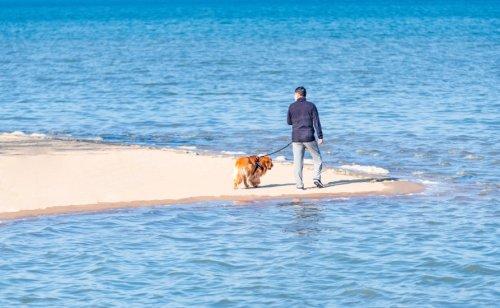 最健康的生活方式,可能就是生活在海边了